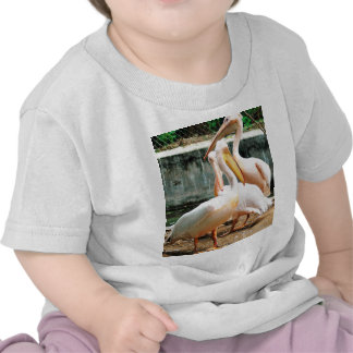 Herons Shirt