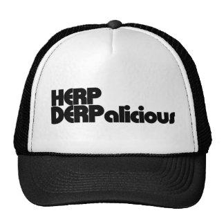 Herp Derp Mesh Hat