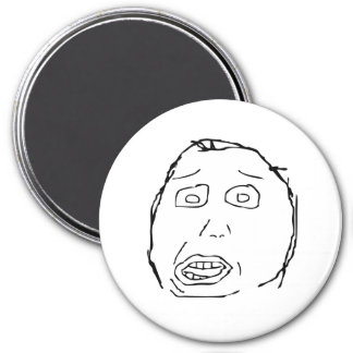 Herp Derp Refrigerator Magnets