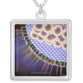 Herpes Virus Silver Plated Necklace