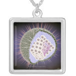 Herpes Virus Structure 2 Personalized Necklace
