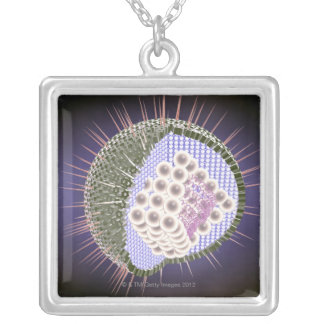 Herpes Virus Structure 2 Silver Plated Necklace