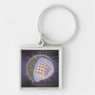 Herpes Virus Structure Silver-Colored Square Keychain