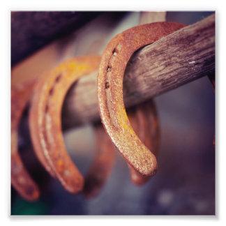 Herraduras en el país de madera del vaquero del cojinete