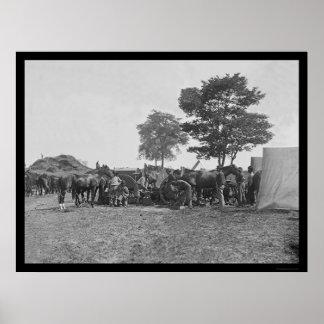 Herrero que calza caballos en Antietam 1862 Impresiones