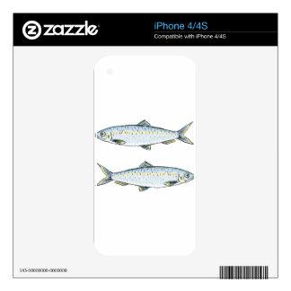 Herring Fish Sketch iPhone 4 Decals