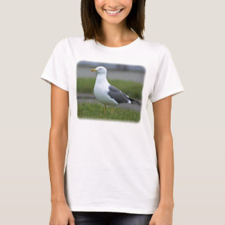 Herring Gull 8P91D-05 T-Shirt