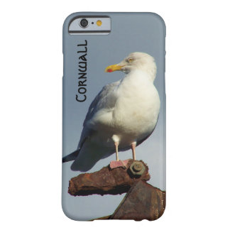 Herring Gull Charlestown Harbour Cornwall England Barely There iPhone 6 Case