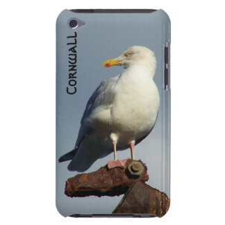 Herring Gull Charlestown Harbour Cornwall England Case-Mate iPod Touch Case