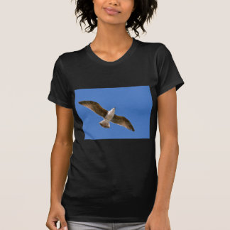 Herring gull in fly T-Shirt