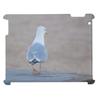 Herring Gull iPad Case
