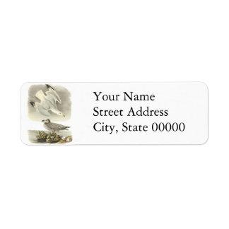 Herring Gull, John Audubon Return Address Label