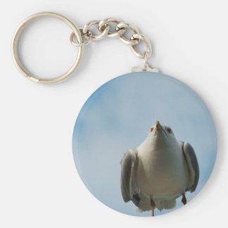Herring Gull Keychain