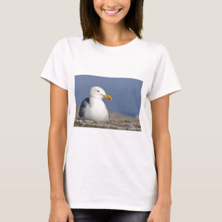 Herring gull lying on wall T-Shirt