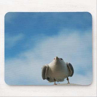 Herring Gull Mousepad