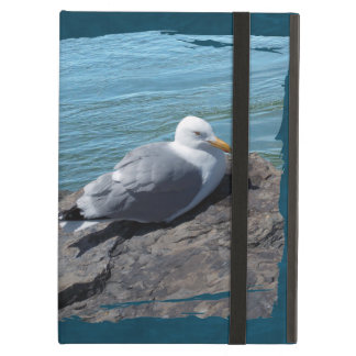 Herring Gull on Rock Jetty iPad Air Cover