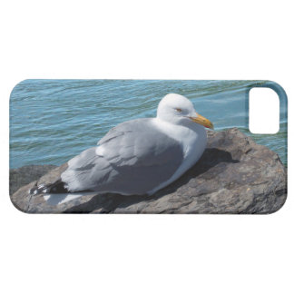 Herring Gull on Rock Jetty iPhone SE/5/5s Case