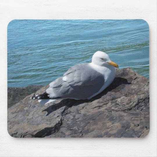 Herring Gull on Rock Jetty Mouse Pad