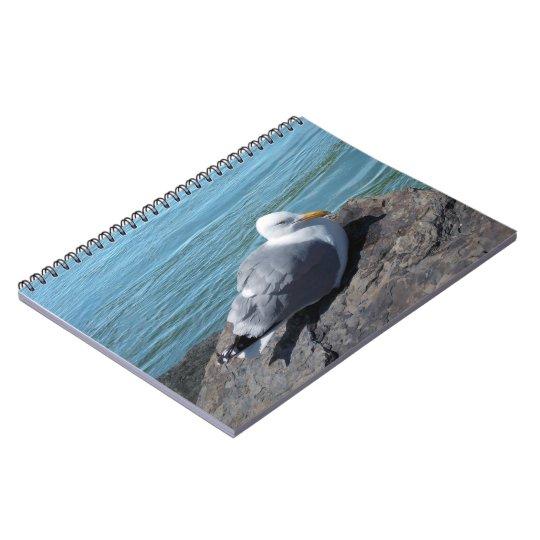 Herring Gull on Rock Jetty Notebook