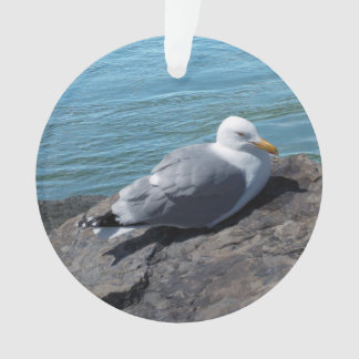 Herring Gull on Rock Jetty Ornament