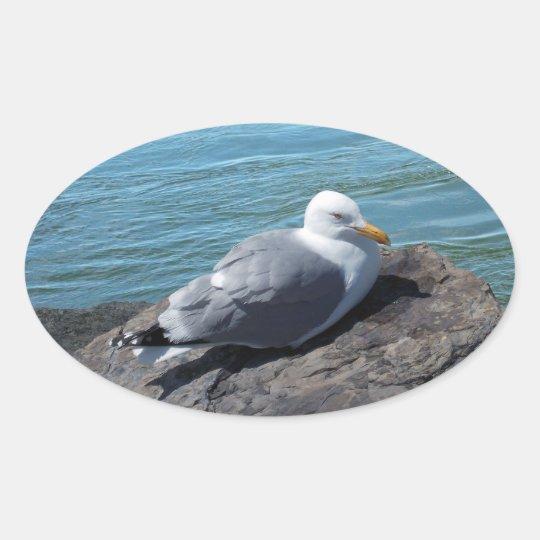 Herring Gull on Rock Jetty Oval Sticker