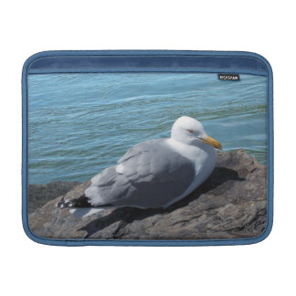 Herring Gull on Rock Jetty Sleeve For MacBook Air