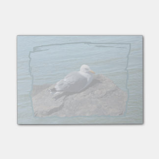 Herring Gull on Rock Jetty Post-it® Notes