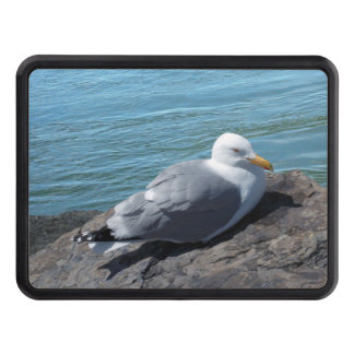 Herring Gull on Rock Jetty Tow Hitch Cover