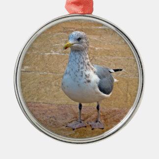 Herring Gull Christmas Ornament