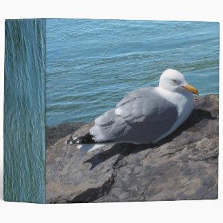 Herring Gull Resting on Rock Jetty: 3 Ring Binder