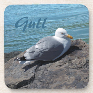 Herring Gull Resting on Rock Jetty: Drink Coaster