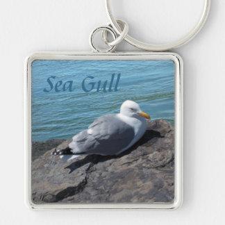 Herring Gull Resting on Rock Jetty: Keychain