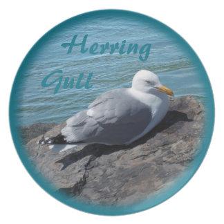 Herring Gull Resting on Rock Jetty: Melamine Plate