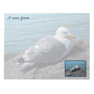 Herring Gull Resting on Rock Jetty: Notepad