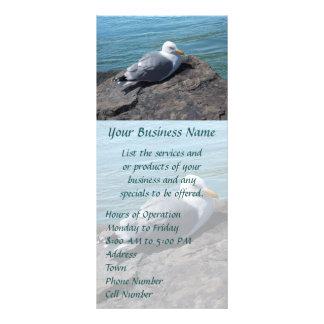 Herring Gull Resting on Rock Jetty: Rack Card Template