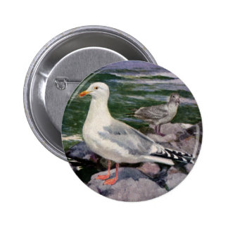 Herring Gulls on Rocky Shoreline Pinback Button