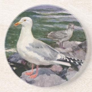 Herring Gulls on Rocky Shoreline Coasters