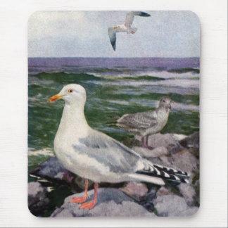 Herring Gulls on Rocky Shoreline Mouse Pad