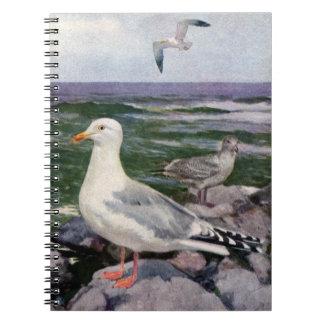Herring Gulls on Rocky Shoreline Spiral Notebooks