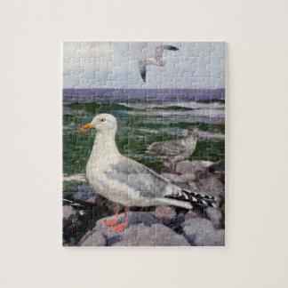 Herring Gulls on Rocky Shoreline Jigsaw Puzzles