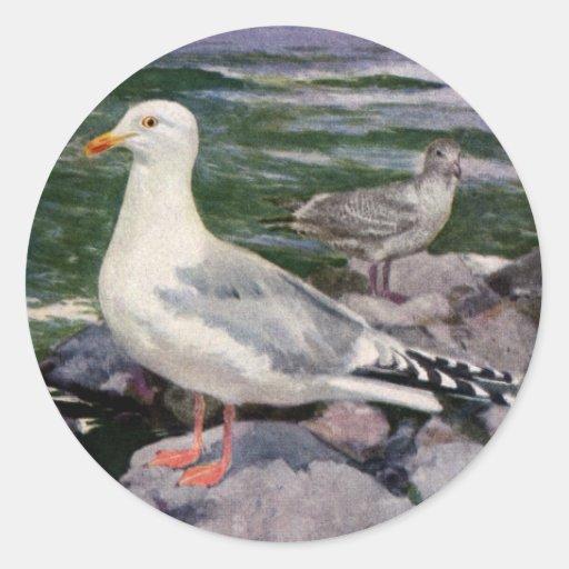 Herring Gulls on Rocky Shoreline Classic Round Sticker