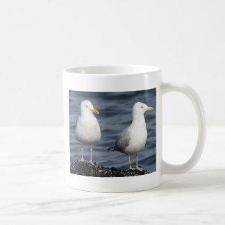 Herring Gulls Photograph Coffee Mugs