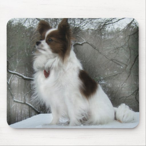 Hershey Kiss Hero Kennel Mousepad Features Tessa