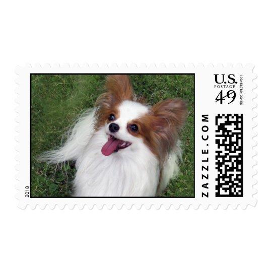 Hershey Kiss Hero Kennel Postage