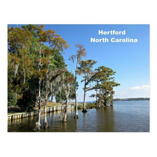 Hertford North Carolina Postcard