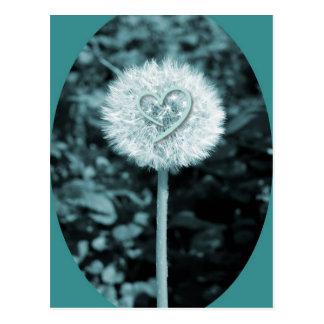 Herz blume heart flower postcard