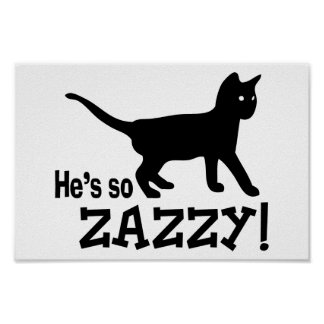 He's so Zazzy - Cat Lover Poster