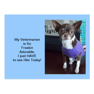 He's such a Great Veterinarian Appointment cards