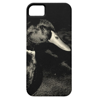 He's Watching You iPhone SE/5/5s Case
