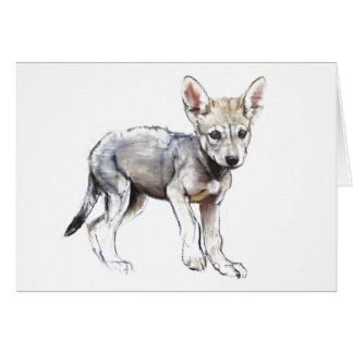 Hesitating Arabian Wolf Pup 2009 Card